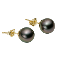 14K YELLOW GOLD EARRINGS WITH TAHITIAN PEARLS