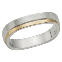 STERLING SILVER AND GOLD BAND